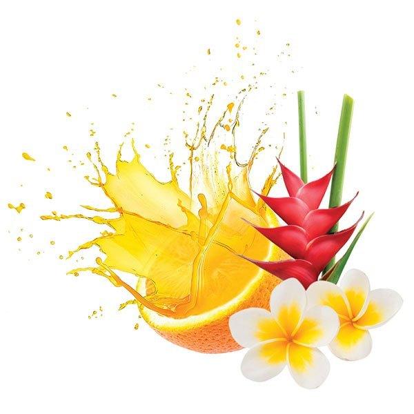 Tropical Citrus